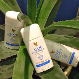 aloe-ever-shield